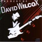 Best of David Wilcox