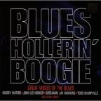 Blues Hollerin Boogie: Great V