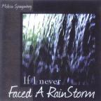 If I Never Faced A Rainstorm