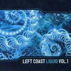 Vol. 1 - Left Coast Liquid