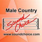Female Country Hits, Vol. 1