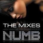 Numb (The 2009 Mixes)