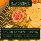 Pema Chodron Collection