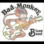 Bad Monkey Blues Band