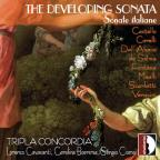 Developing Sonata