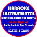 Drinking From The Bottle (In The Style Of Calvin Harris & Tinie Tempah) [karaoke Instrumental Version] - Single