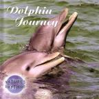 Nature's Rhythms: Dolphin Journey