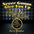 Never, Never Gonna Give You Up (In The Style Of Lisa Stansfield) [karaoke Version] - Single