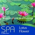 Collection Spa: Lotus Flower