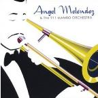 Angel Melendez & The 911 Mambo Orchestra