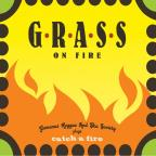Grass on Fire