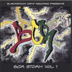 Blackstock Camp Records Presents BCR Storm, Vol. 1