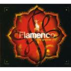 Flamenco New Grooves