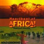 Heartbeat Of Africa!: Pousada
