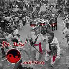 Texas Blues Project, Vol. 2