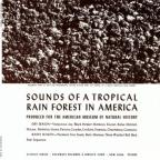 Sounds of a Tropical Rain Forest in America