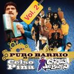 Puro Barrio 25 Exitos, Vol. 2