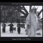 Angel Of The Last Waltz