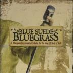 Blue Suede Bluegrass