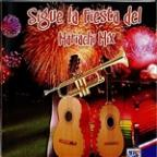 Sigue La Fiesta Del Mariachi Mix