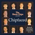 Chipfaced