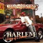 Harlem: Diary of a Summer