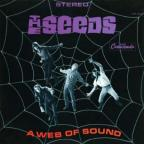 Web of Sound