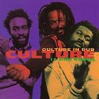 Culture In Dub: 15 Dub Shots