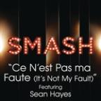 Ce N'Est Pas Ma Faute (It's Not My Fault) (Smash Cast Version) [feat. Sean Hayes]