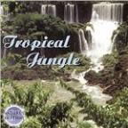 Nature's Rhythms: Tropical Jungle