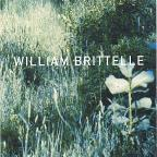 William Brittelle: Palisades