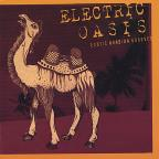 Electric Oasis: Exotic Arabian Grooves