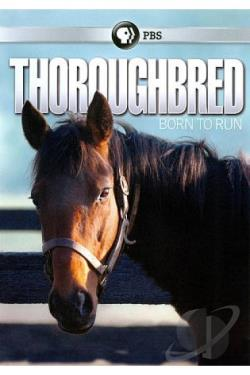 Thoroughbred: Born to Run DVD Cover Art