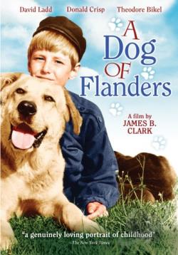 Dog of Flanders DVD Cover Art