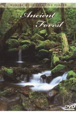 World's Most Relaxing Places: Ancient Forest DVD Cover Art