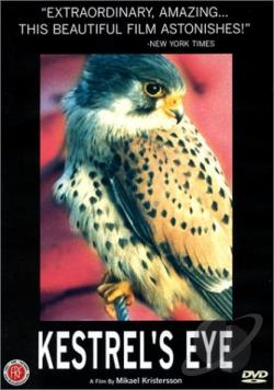 Kestrel's Eye DVD Cover Art
