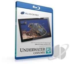 BluScenes: Underwater Cozumel BRAY Cover Art