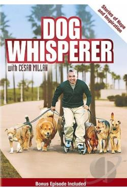 Dog Whisperer with Cesar Millan: Stories of Hope and Inspiration DVD Cover Art