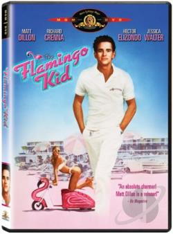 Flamingo Kid DVD Cover Art