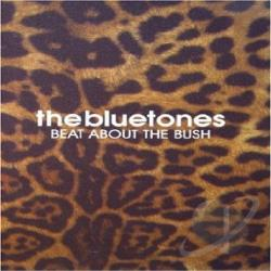 Bluetones DVD Cover Art