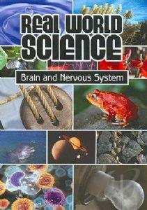 Brain And Nervous Systems DVD Cover Art