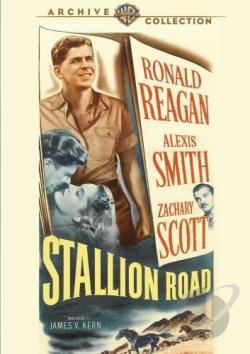 Stallion Road DVD Cover Art