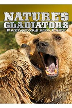 Nature's Gladiators: Predators and Prey DVD Cover Art