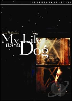 My Life as a Dog DVD Cover Art