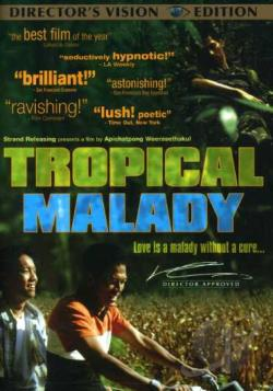 Tropical Malady DVD Cover Art