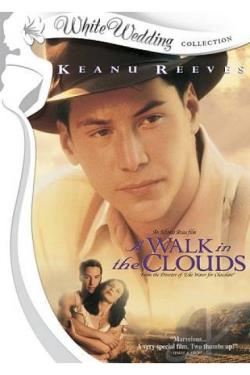 Walk in the Clouds DVD Cover Art