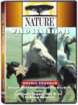 Nature - Cloud: Wild Stallion of the Rockies DVD Cover Art