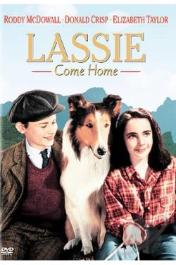 Lassie Come Home DVD Cover Art