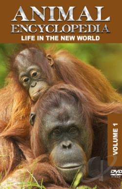 Animal Encyclopedia, Vol. 1: Life in the New World DVD Cover Art