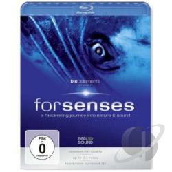 Forsenses-Fascinating Journey Into Nature & Sound BRAY Cover Art